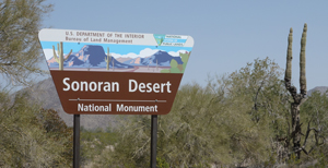 Sonoran Desert National Monument